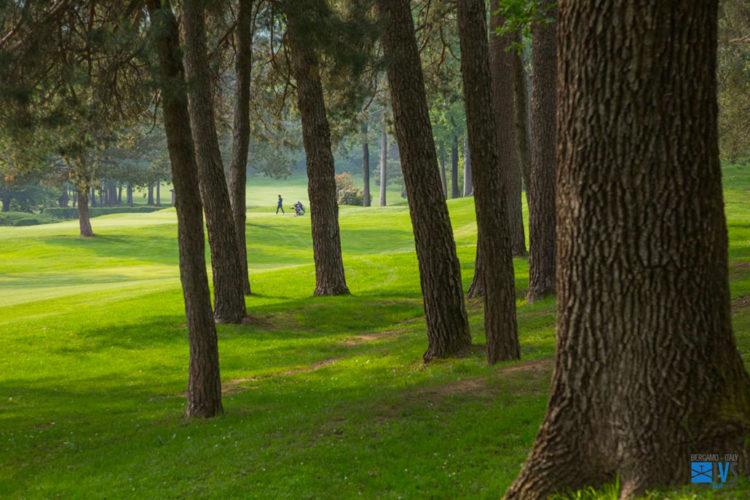 golf-tournament-IVS-2019-30-1030×687