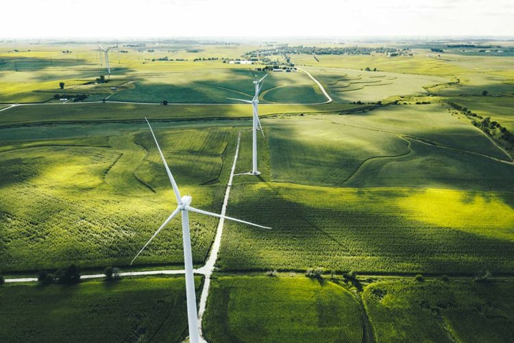 Amazon plans to invest in a new 115MW wind farm project